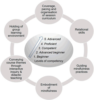 Domains and competence levels of the MBI:TAC